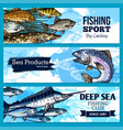 banners of fishing club or sea fish product vector image