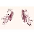 hands of Jesus Christ hand drawn vector image