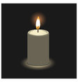 candle in 3D view vector image