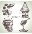 Hand drawn vintage honey set vector image
