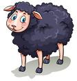 One black sheep vector image