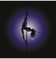 pole dance Kim position vector image