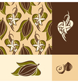 Cocoa bean with leaves and vanilla flower with pod vector image