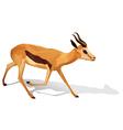 A deer vector image