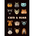 Cats and dogs icon set format vector image