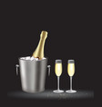 champagne bottle in bucket vector image