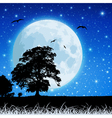 moon in night sky vector image vector image
