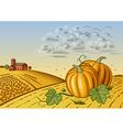 Pumpkin harvest landscape vector image