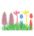 Flowerbed Flower vector image