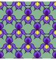 Stylized Iris Background vector image