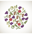 Colorful vegetables icons vector image