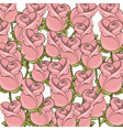 Pink Roses background vector image