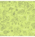 seamless pattern with berries on a green vector image