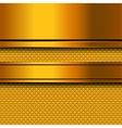 Abstract golden metal background vector image