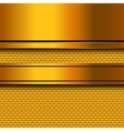 Abstract golden metal background vector image