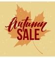 Autumn seasonal sale banner design Fall leaf vector image