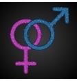Gender Men Women Blue Pink Sequins Icon vector image