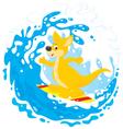 Kangaroo surfer vector image