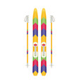 colorful sport winter ski isolated vector image