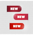 Red Labels Tags Set with New Title vector image vector image