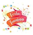 Festa Junina festive background vector image
