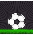 soccer background with ball vector image
