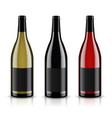mockup wine bottle design vector image