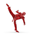 taekwondo high kick action with guard equipment vector image