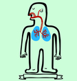 respiratory system vector image