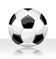 soccer ball on white background vector image