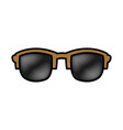 sunglasses fashion accesory vector image