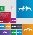 Betting on dog fighting icon sign buttons Modern vector image