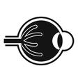 Human eyeball icon simple style vector image