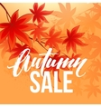 Autumn sale banner with fall leaves vector image