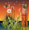 grasses vector image