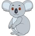 Koala cartoon sitting vector image