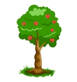 Green apple tree full of red apples vector image