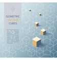 Isometric cubes background vector image