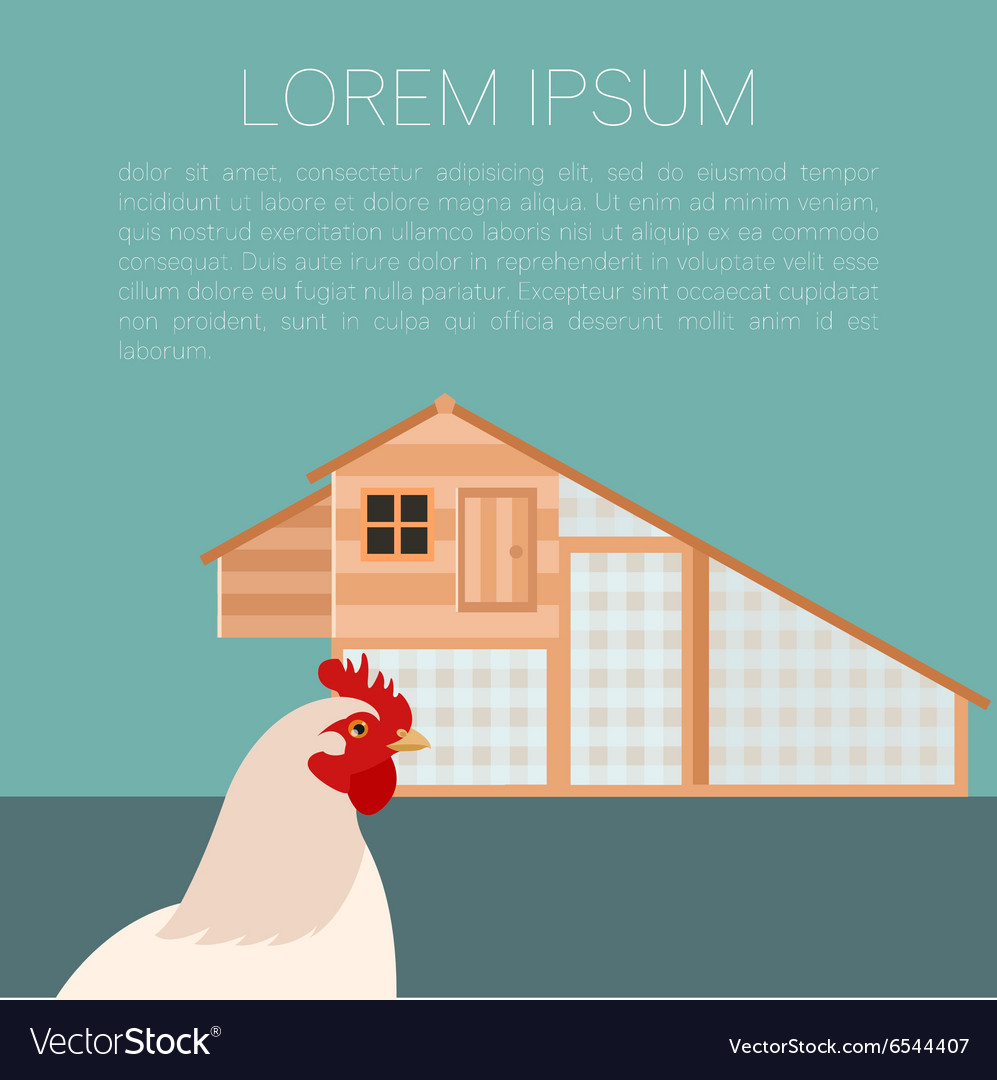 Henhouse banner with chicken vector