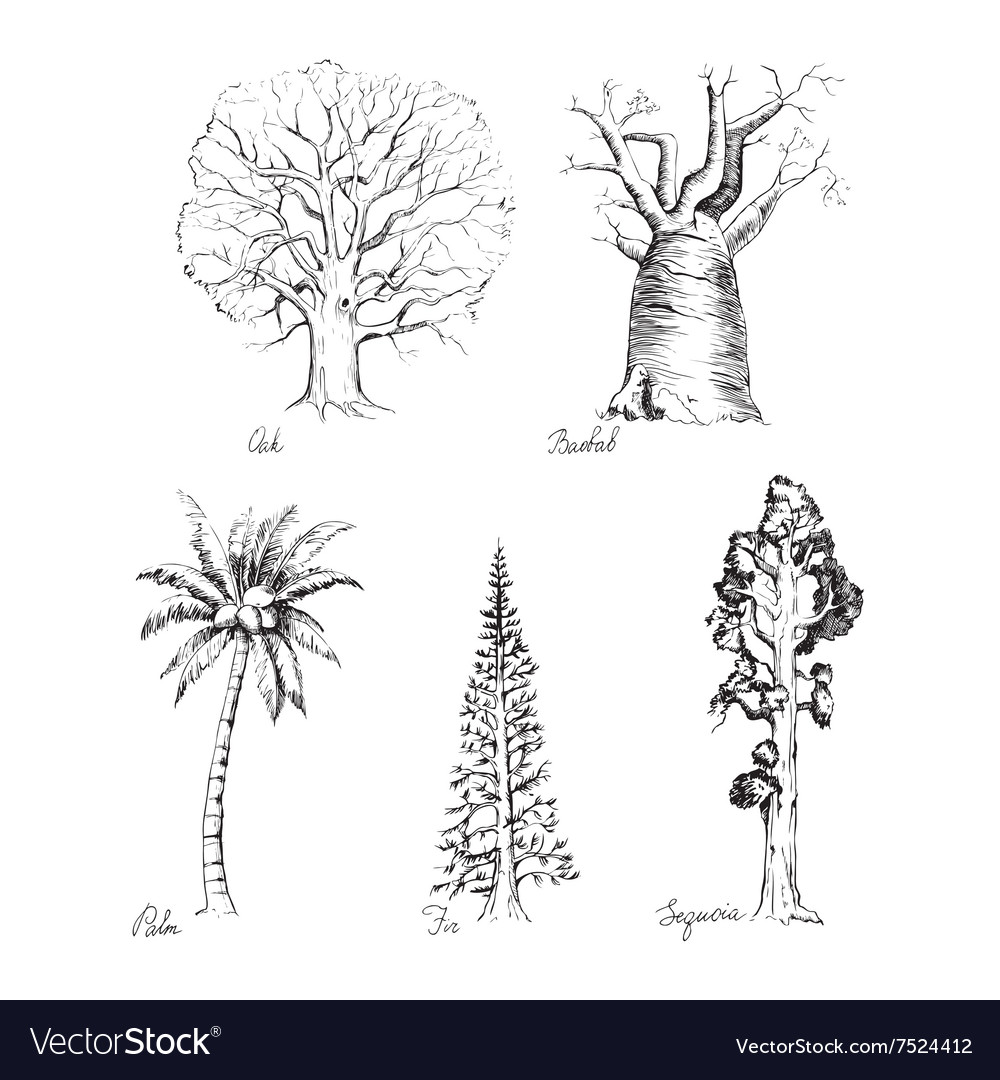 Set of handdrawing style of graphic trees vector