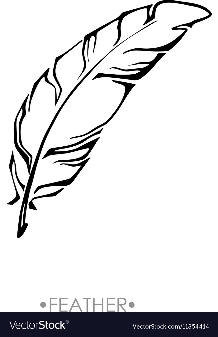 Indian boho feather hand drawn vector