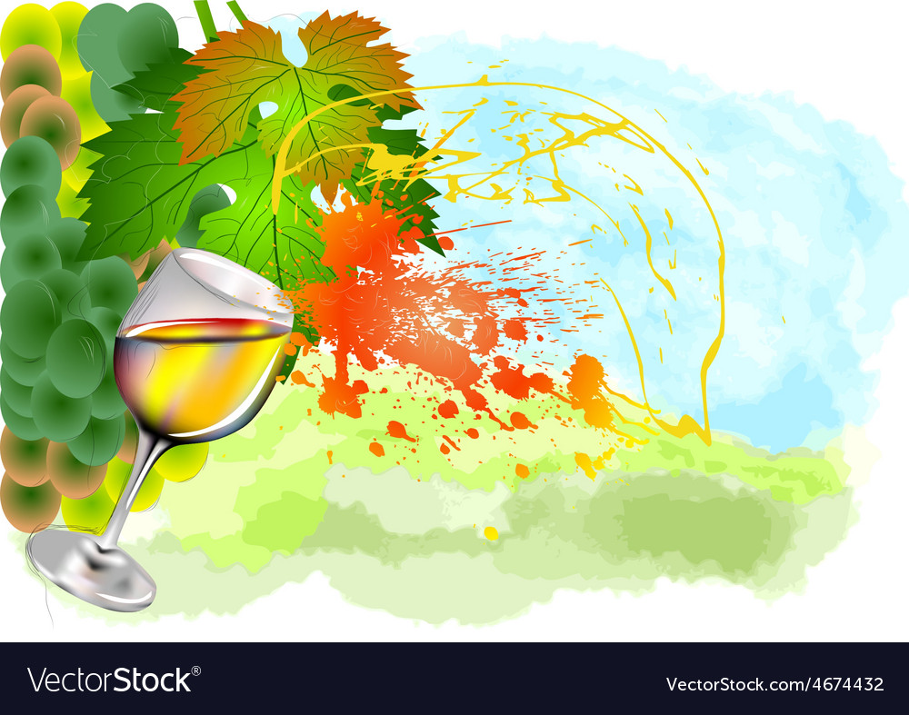 Splash of white wine vector