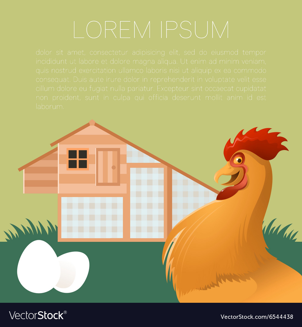 Henhouse banner with rooster vector