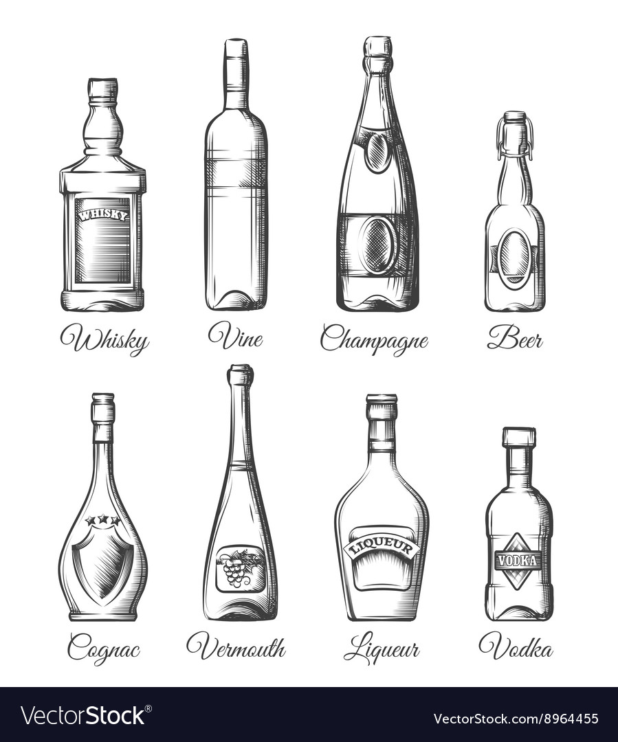 Alcohol bottles in hand drawn style vector