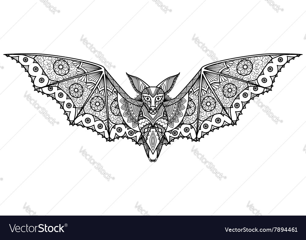 Bat coloring page vector