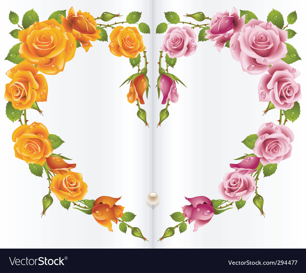 Red and white rose frame vector