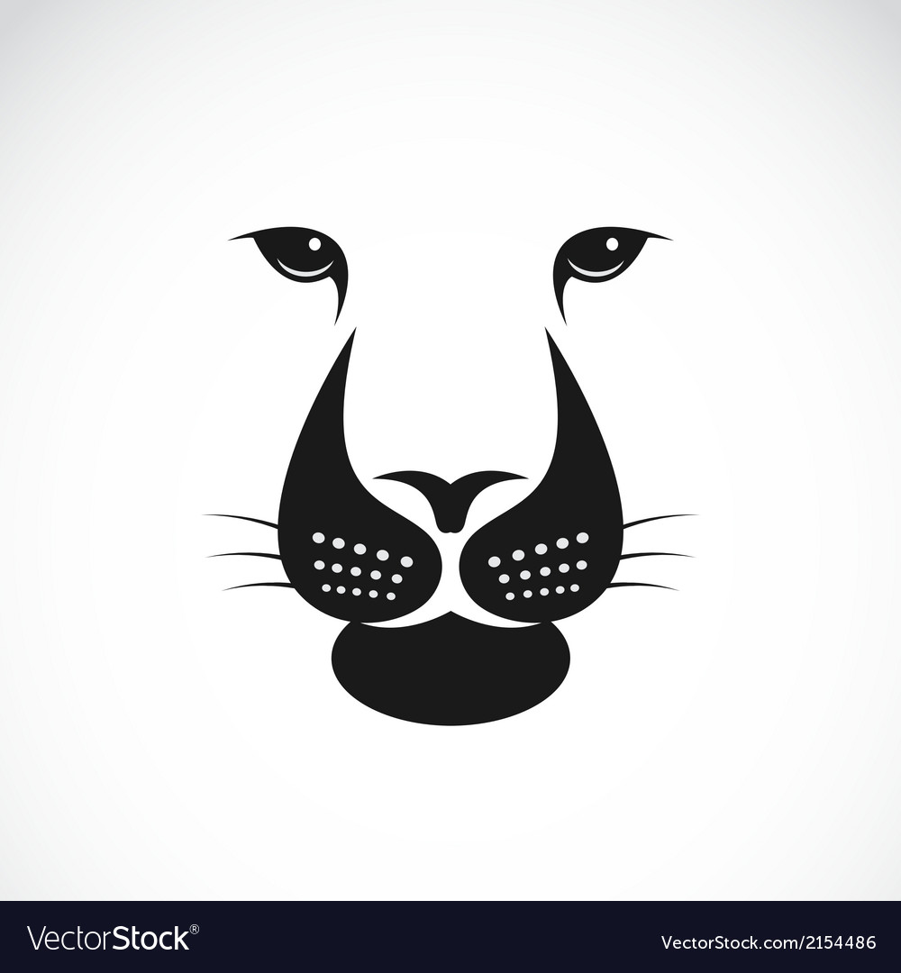 Lions face vector