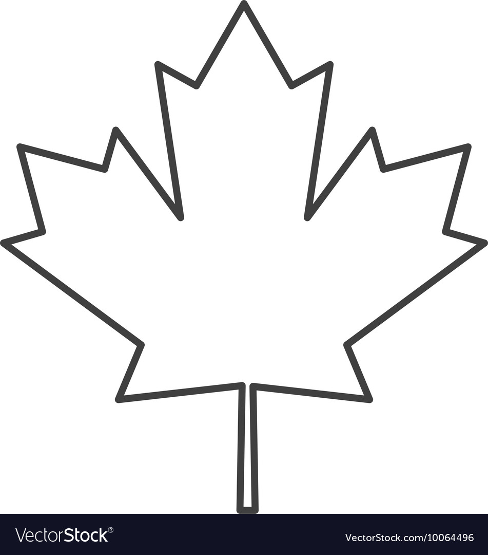 Canada flag maple leaf icon vector