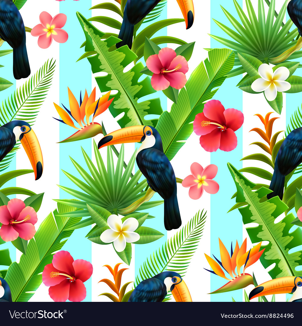 Rainforest toucan flat seamless pattern vector
