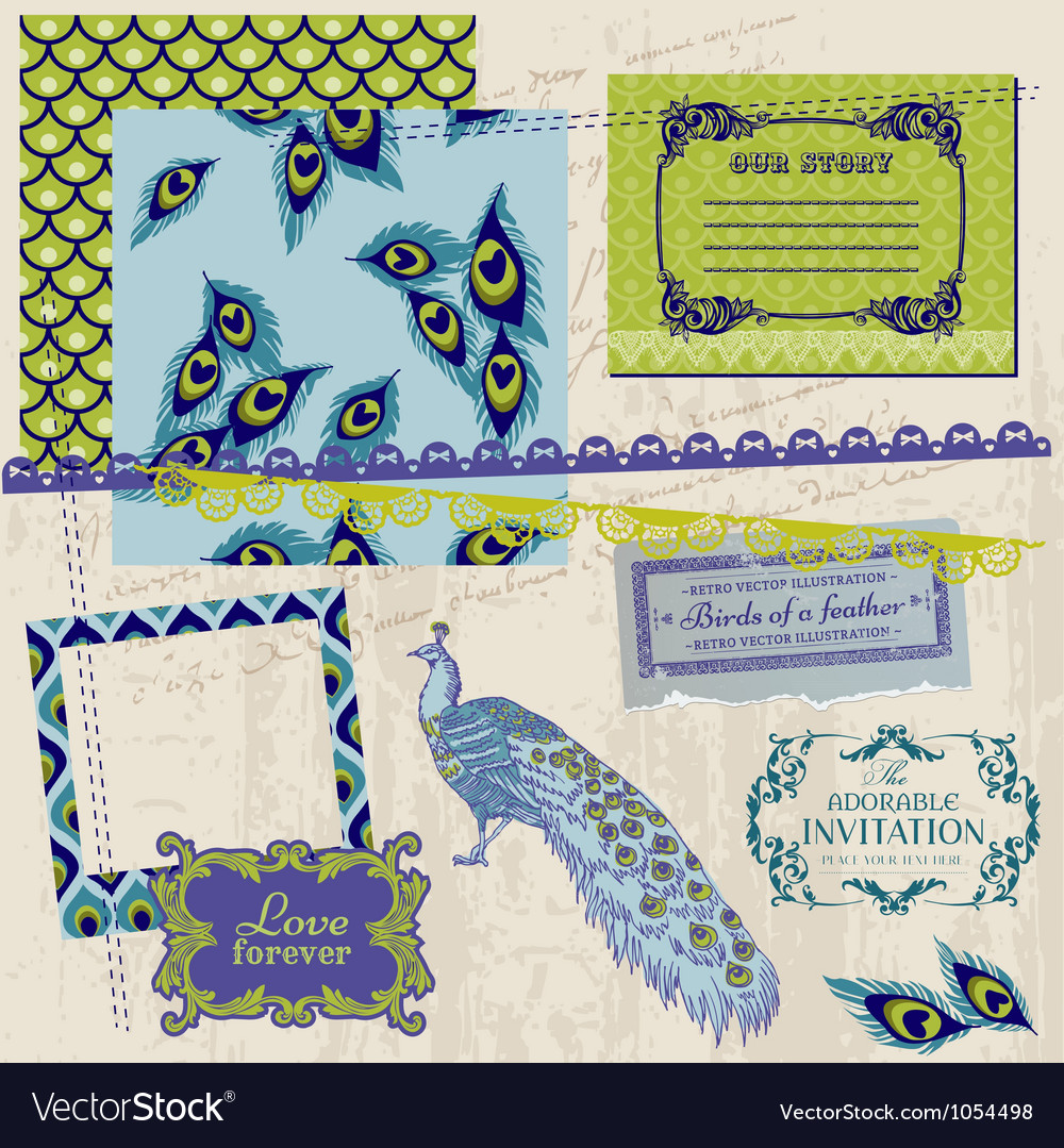 Design elements  vintage peacock feathers vector